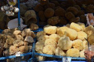 תעשיית דייג ספוג באי סימי